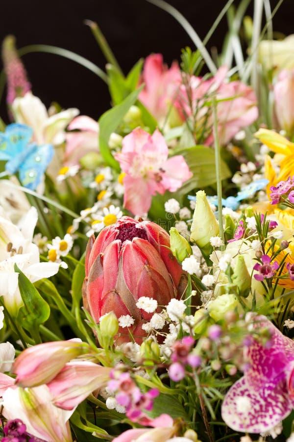 Bukett av färgrika blommor royaltyfri fotografi