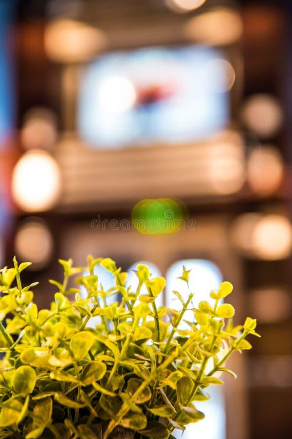 Bukett av gula blommor arkivbilder