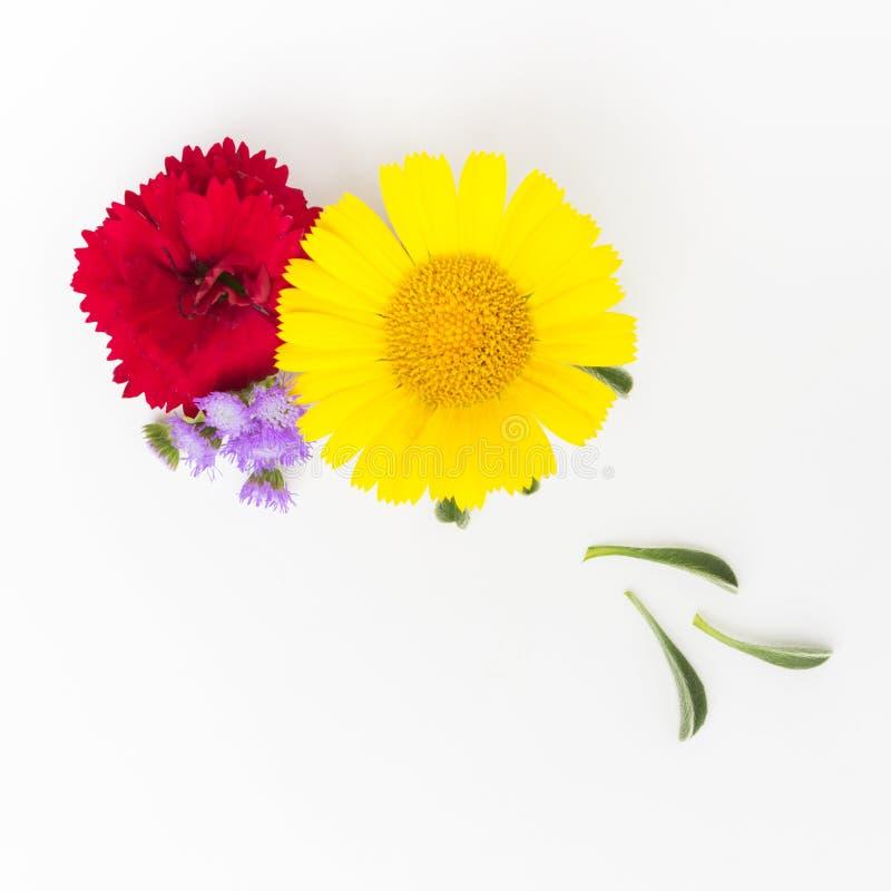 Bukett av gula och röda blommor på vit arkivfoton
