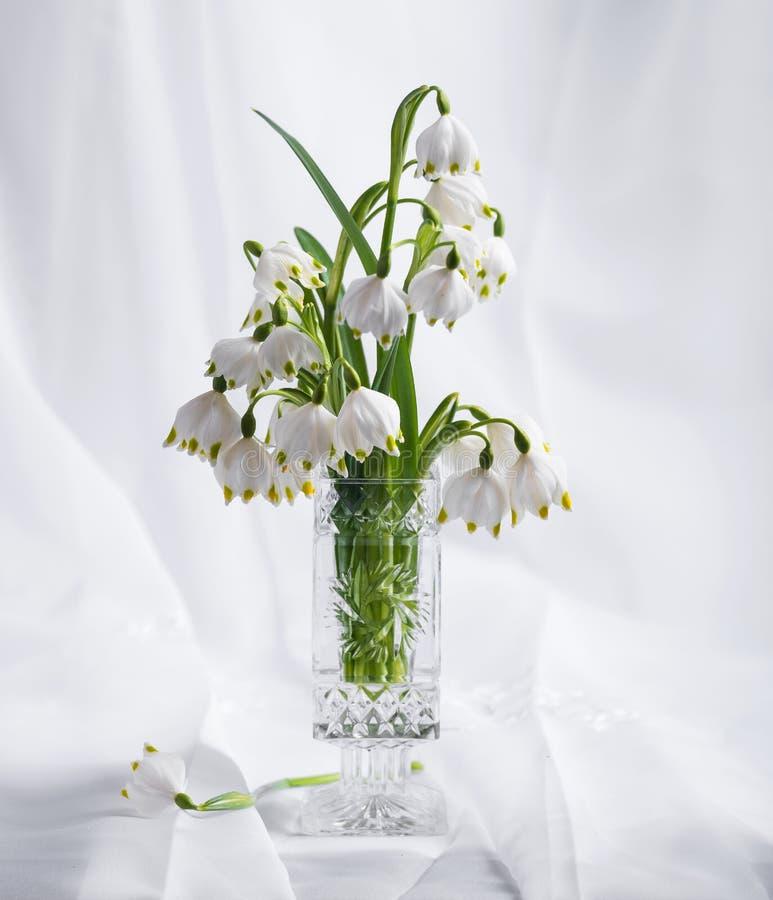 Bukett av härliga för vår blommor först royaltyfria bilder
