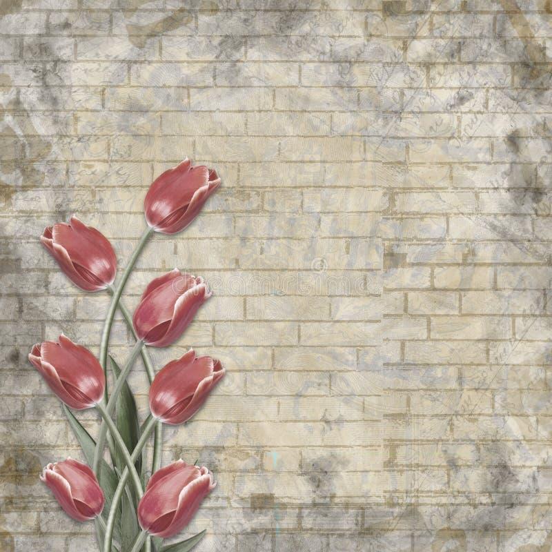 Bukett av härliga röda tulpan på bakgrunden av den målade tegelstenväggen för lyckönskan arkivbild