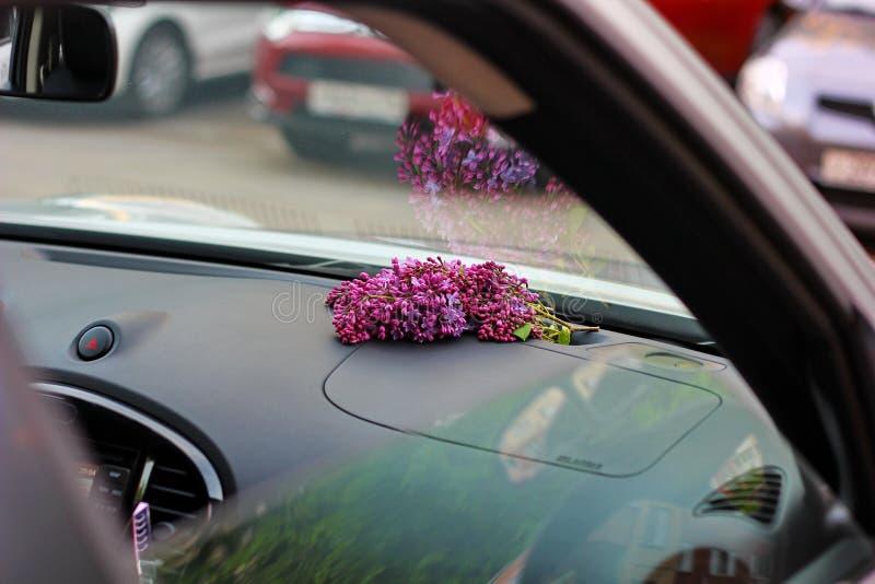 bukett av lilan i bilen arkivbilder