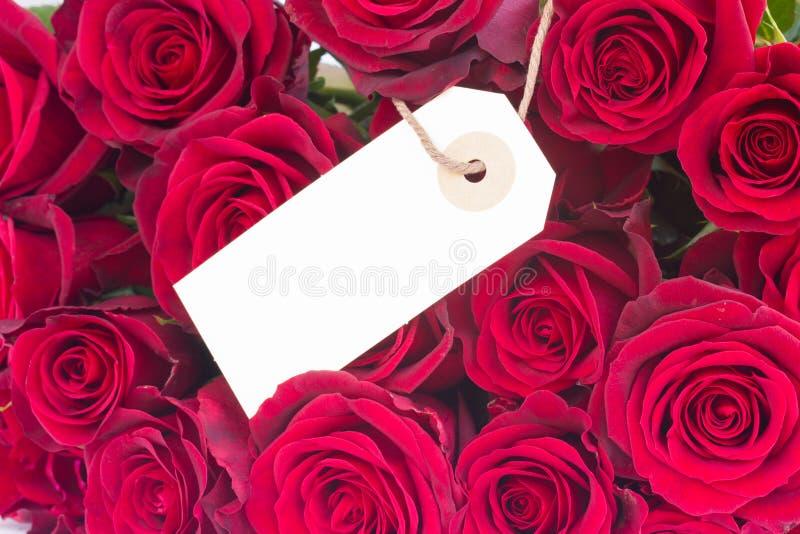 Bukett av mörker - röda rosor med etiketten royaltyfria foton