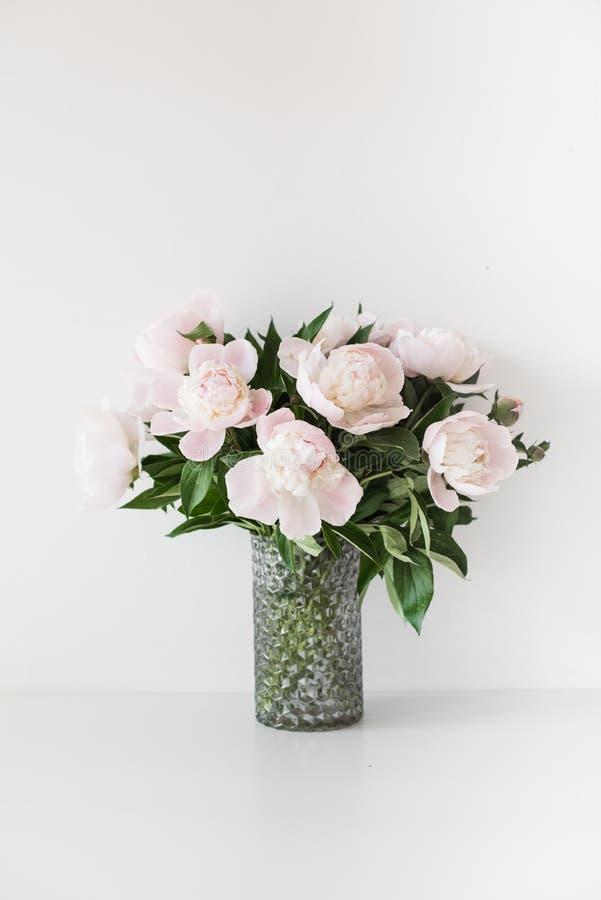 Bukett av mjuka rosa pioner i vas nära den vita väggen royaltyfri bild
