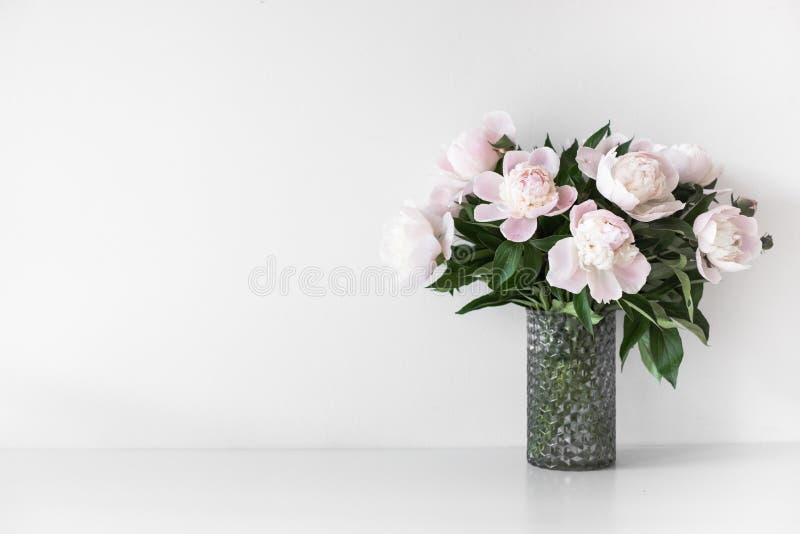 Bukett av mjuka rosa pioner i vas nära den vita väggen arkivbild