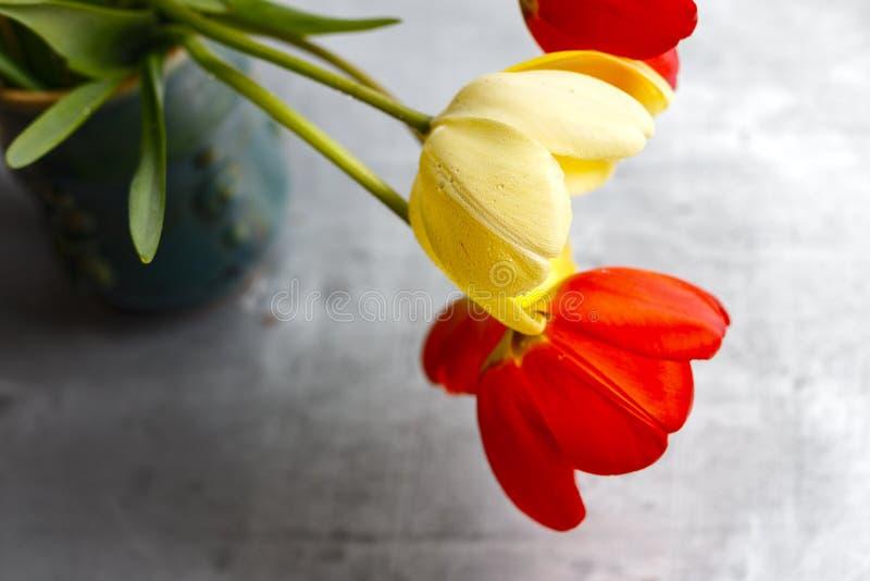 Bukett av röda och gula vårtulpan mot lantlig träbakgrund, slut upp selektiv fokus royaltyfria foton