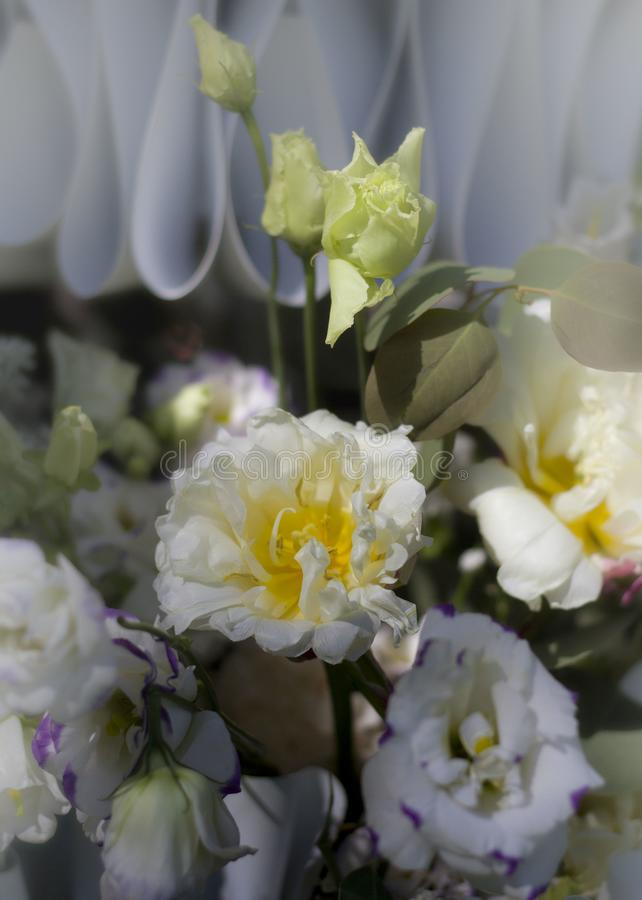 bukett av röda vita blommor som utgöras i en härlig sammansättning arkivfoto