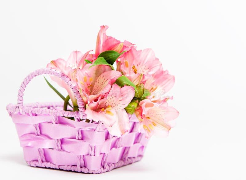 Bukett av rosa alstroemeria i korg royaltyfria foton