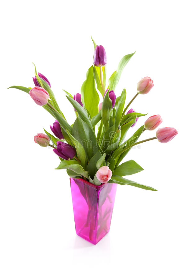 Bukett av rosa holländska tulpan i vas royaltyfria bilder