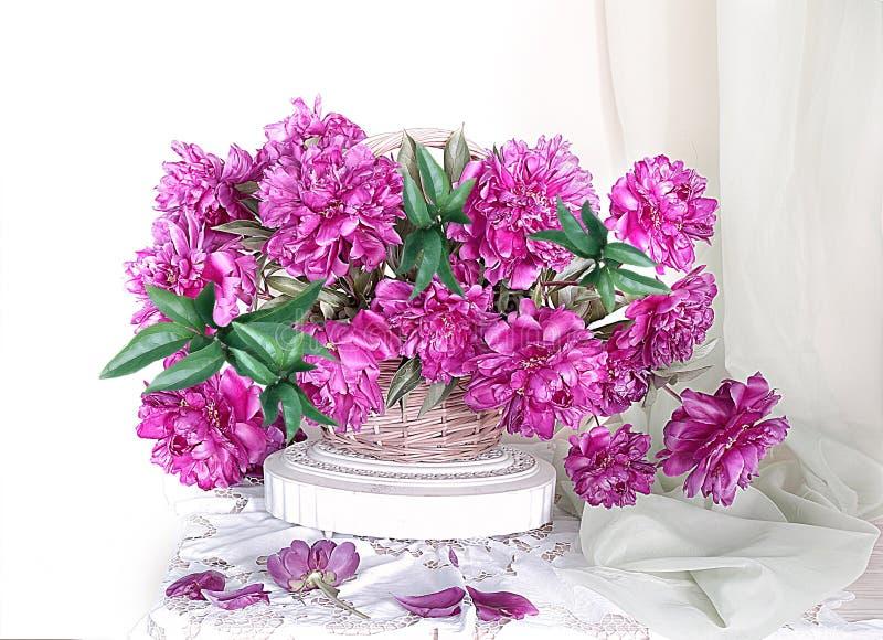 Bukett av rosa pioner i en vide- korg blommar livstid fortfarande royaltyfri bild