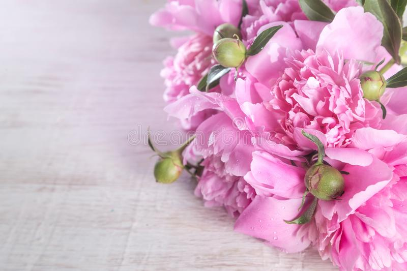 Bukett av rosa pioner royaltyfria bilder