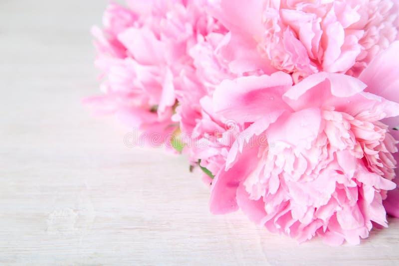 Bukett av rosa pioner arkivfoton