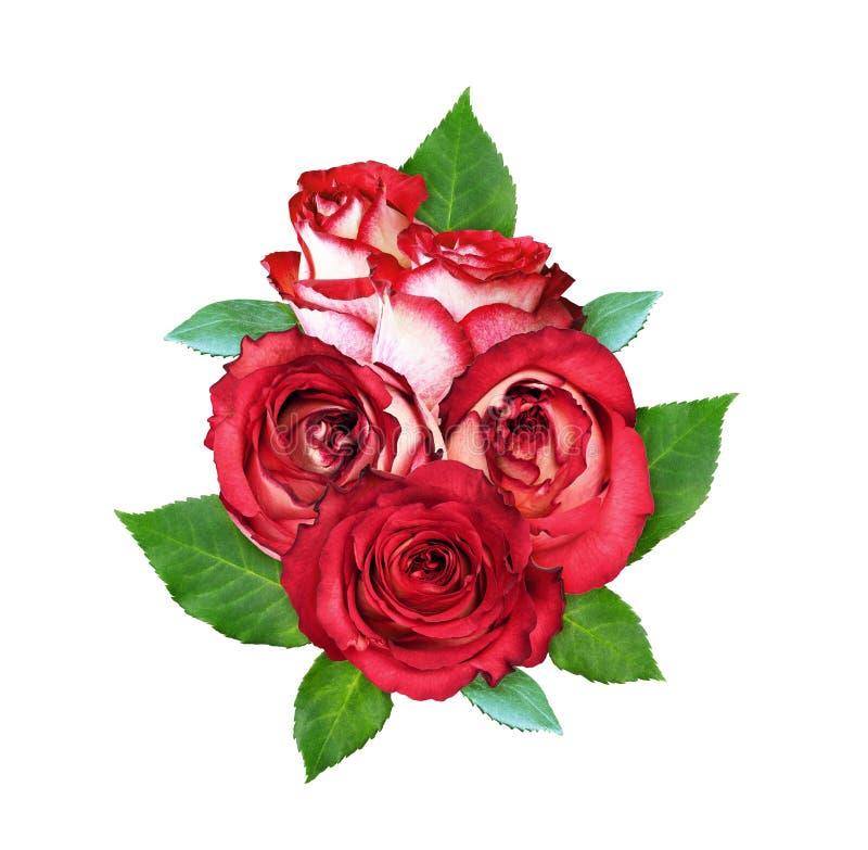 Bukett av rose blommor för red royaltyfri illustrationer