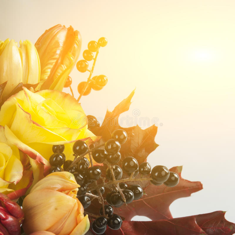 Bukett av rosor, tulpan, lösa druvor och höstsidor royaltyfria foton