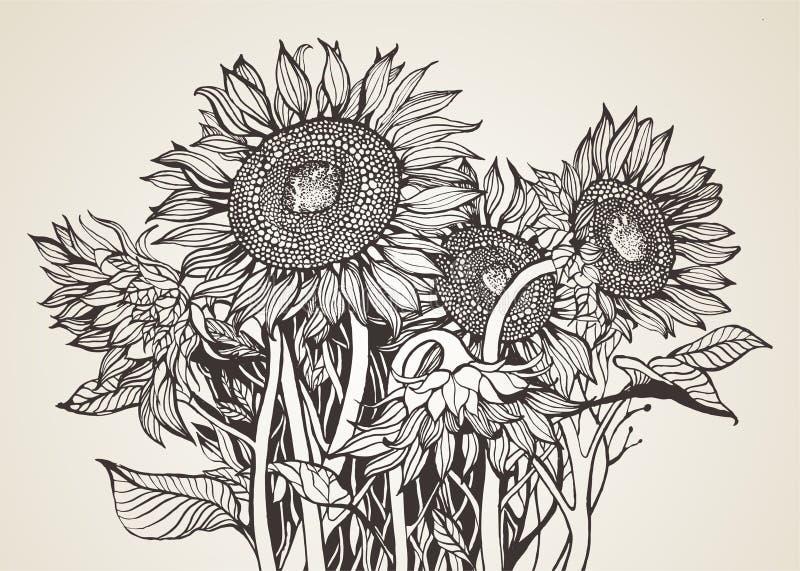 Bukett av solrosor stock illustrationer