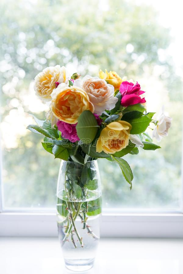 Bukett av sommarrosor i den glass vasen n?ra f?nstret blommabakgrund, hälsningkort arkivbild