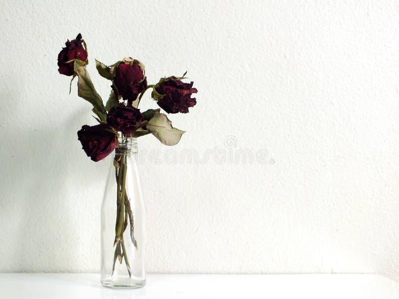 Bukett av torkade röda rosor i glasflaska royaltyfria bilder