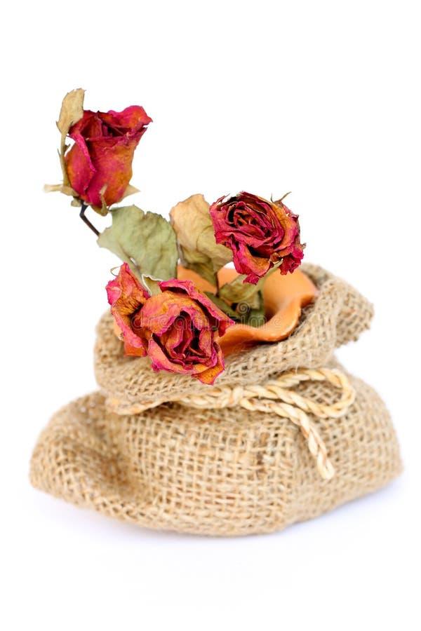 Bukett av torkade vissna rosor i säckvävpåse på vit royaltyfri foto