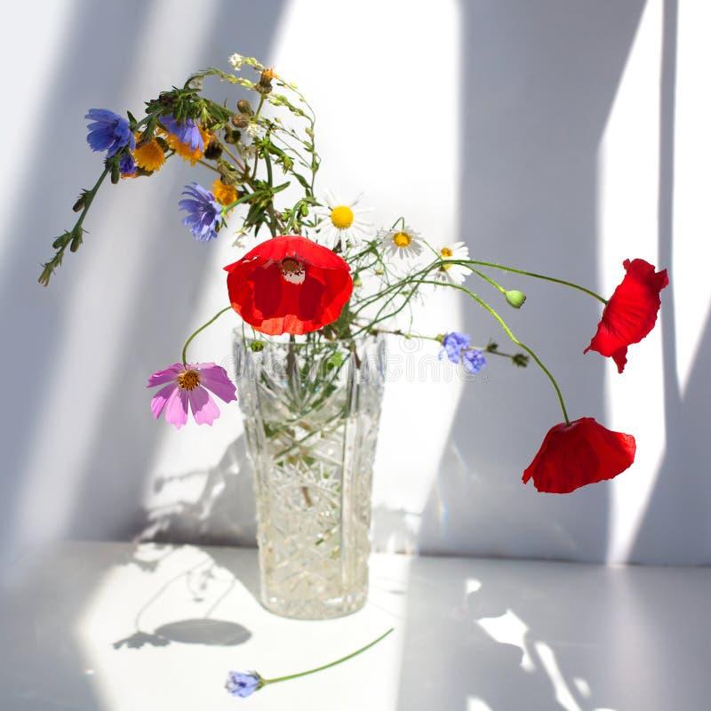 Bukett av tre röda vallmoblommor och olika vildblommor i kristallvas med vatten på den vita tabellen med kontrastsolljus och royaltyfri fotografi