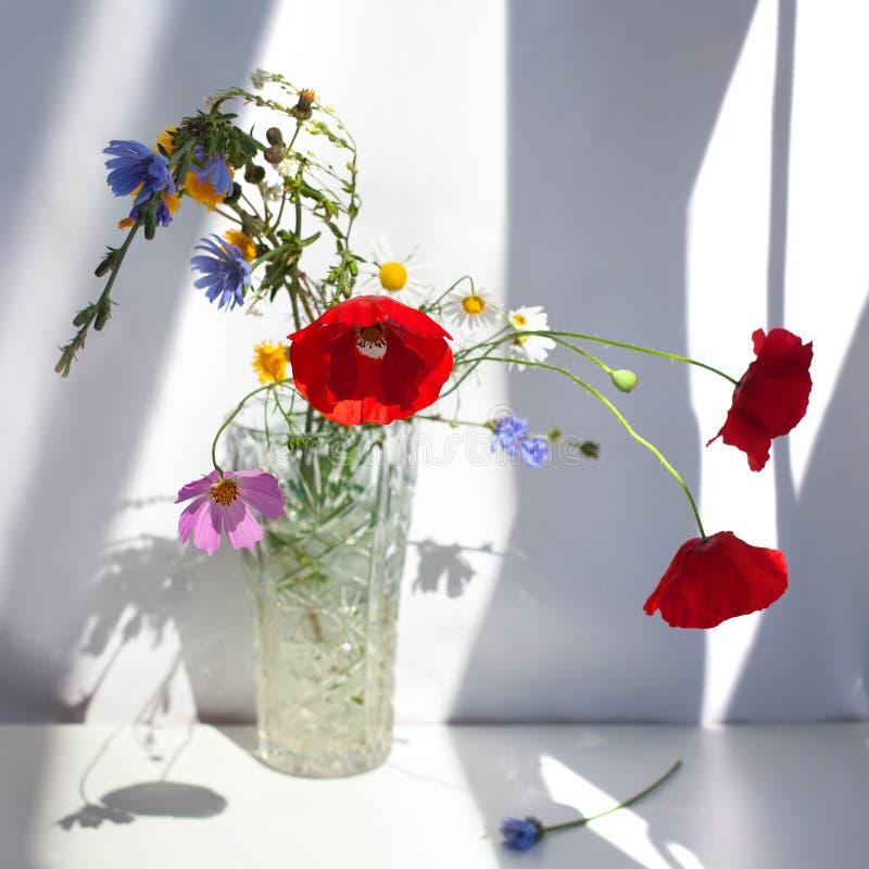 Bukett av tre röda vallmoblommor och olika vildblommor i kristallvas med vatten på den vita tabellen med kontrastsolljus och arkivfoto