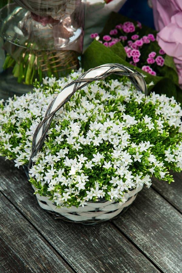 Bukett av vita blommor i en korg arkivbild
