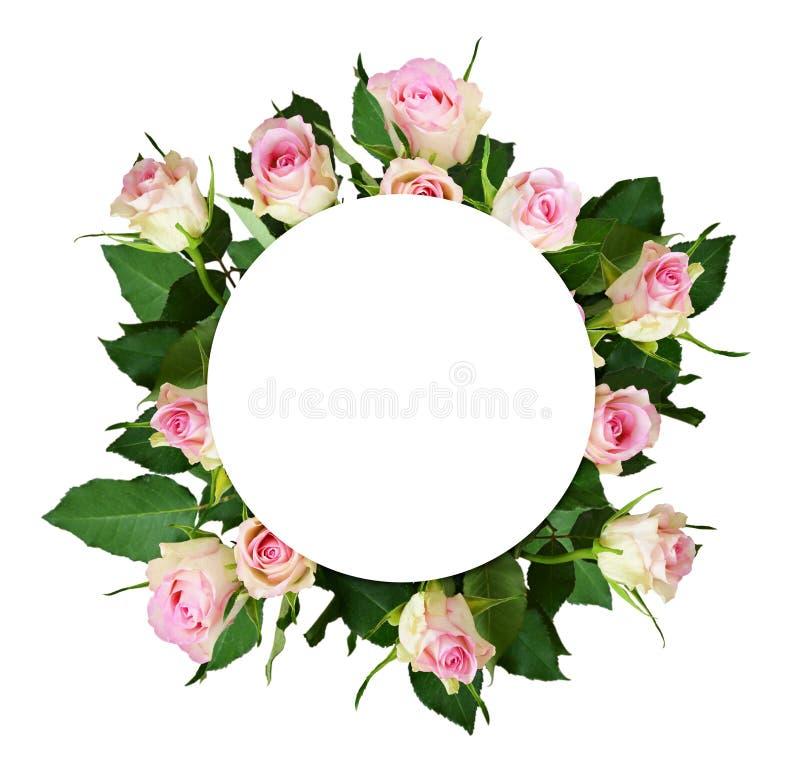 Bukett för vit- och rosa färgrosblommor och ett runt ställe för text royaltyfri bild