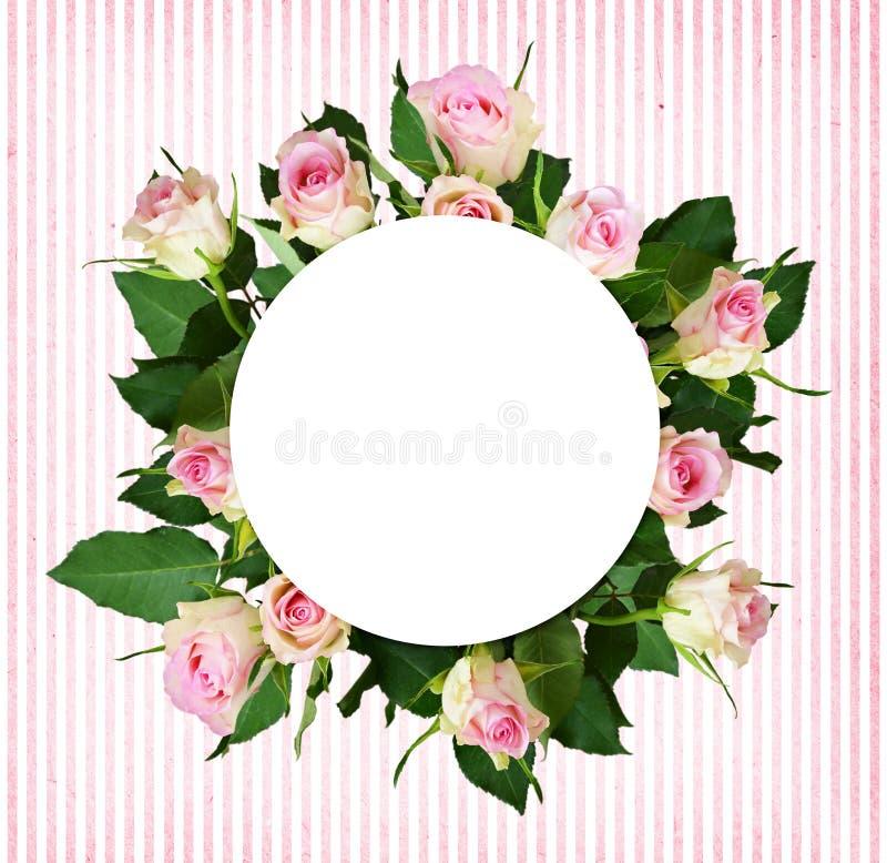 Bukett för vit- och rosa färgrosblommor och ett runt ställe för text royaltyfri foto