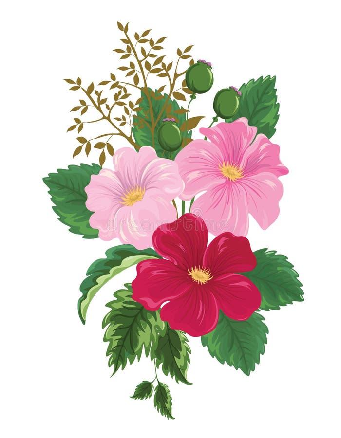 Bukett med tre blomma rosa blommor och en kvist av knoppar royaltyfri illustrationer