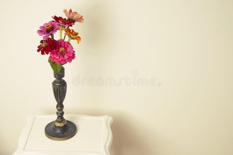 Buketten av den rosa zinniaen blommar i en isolerad vas inomhus kopiera avstånd royaltyfri fotografi