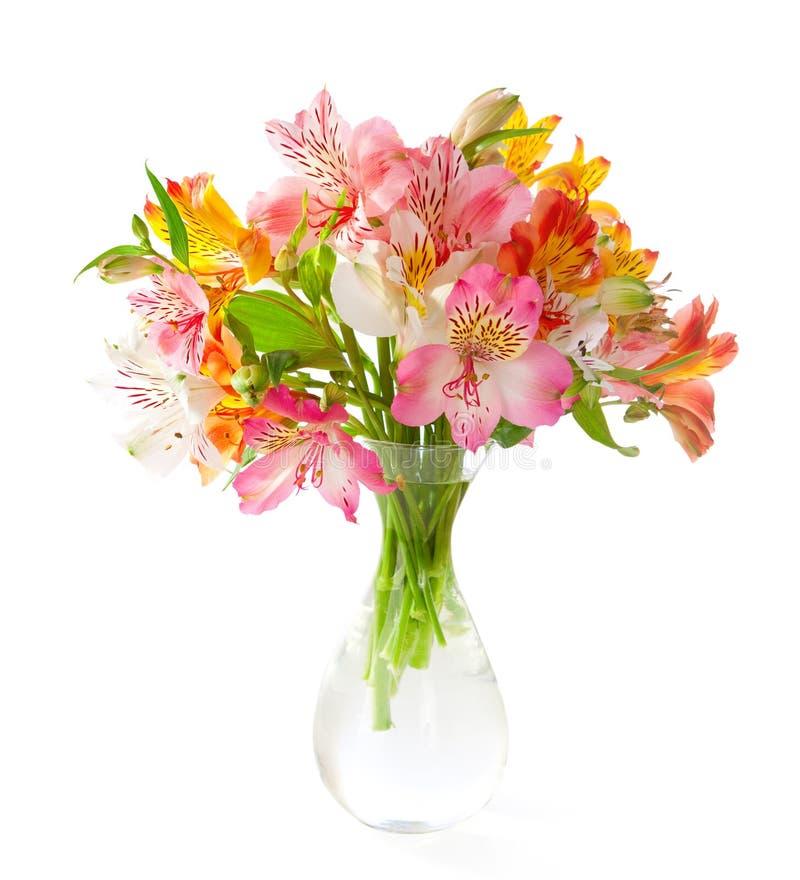 Buketten av färgrik Alstroemeria blommar i en genomskinlig glass vas som isoleras på vit bakgrund arkivbilder