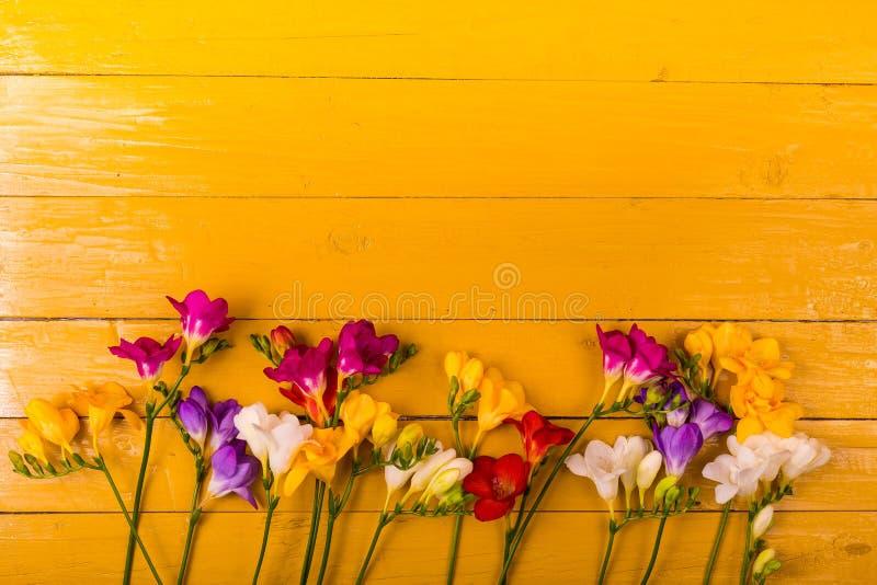 Buketten av freesia blommar på en träbakgrund royaltyfri bild