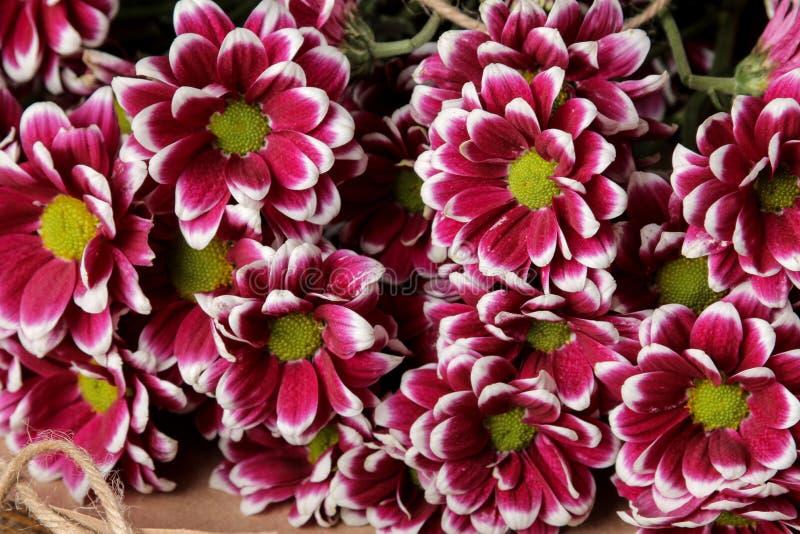 buketten av hösten blommar krysantemumnärbild på en brun trätabell royaltyfri foto