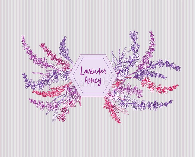 Buketten av handen dragen färg skissar av lavendelblomman och gulliga pilbågar som isoleras på grå bakgrund Frankrike provence re stock illustrationer