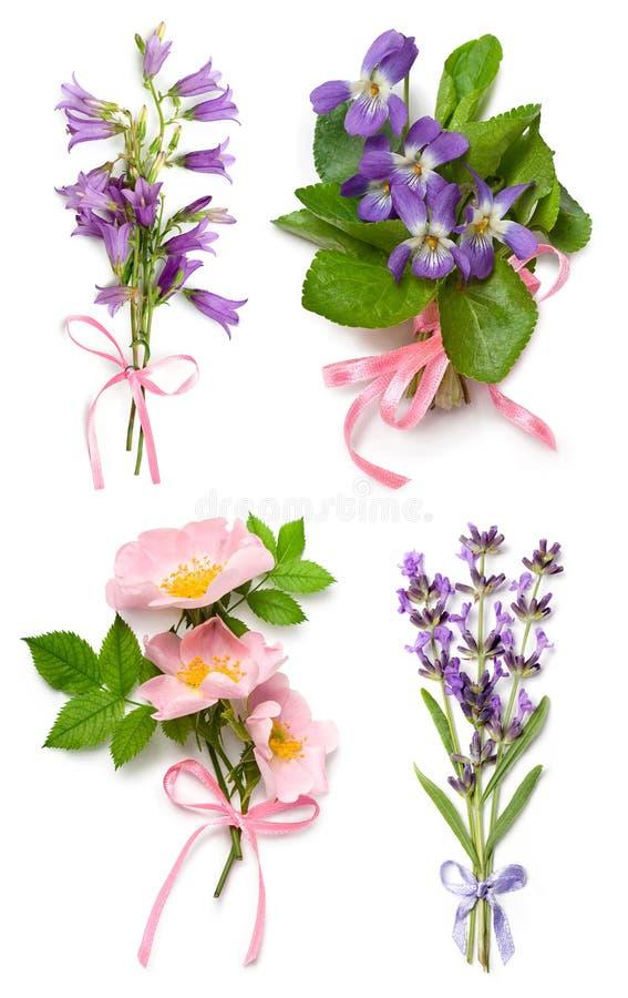 Buketten av lösa violets, hund steg, lavendel och klockablommor arkivbild