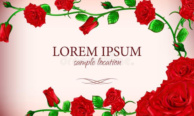 Buketten av röda rosor med texten på kortet eller inbjudan fotografering för bildbyråer