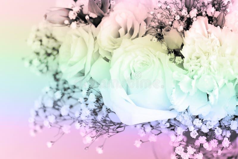 Buketten av rosor dekorerade pastellfärgade skuggor arkivbilder