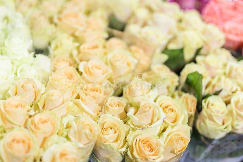 Buketter av multiclored rosor ny bakgrundsblomma Blomsterhandlareservice Blomsterhandel för grossist för bröllopgåva Blomma royaltyfri fotografi