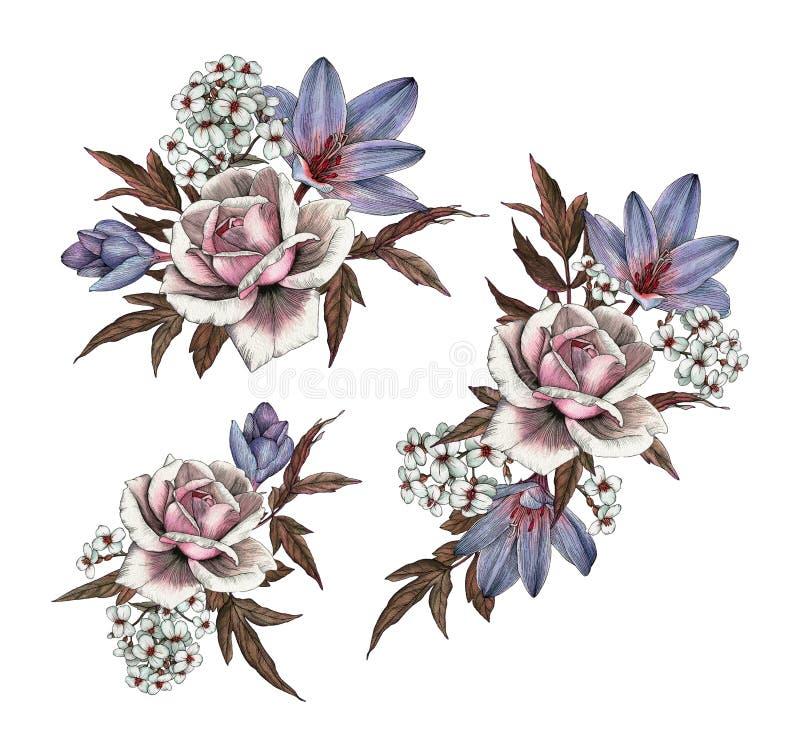Buketter av rosor, krokusar och jasmin författare blommar set vattenfärg för I-målningsbild royaltyfri illustrationer