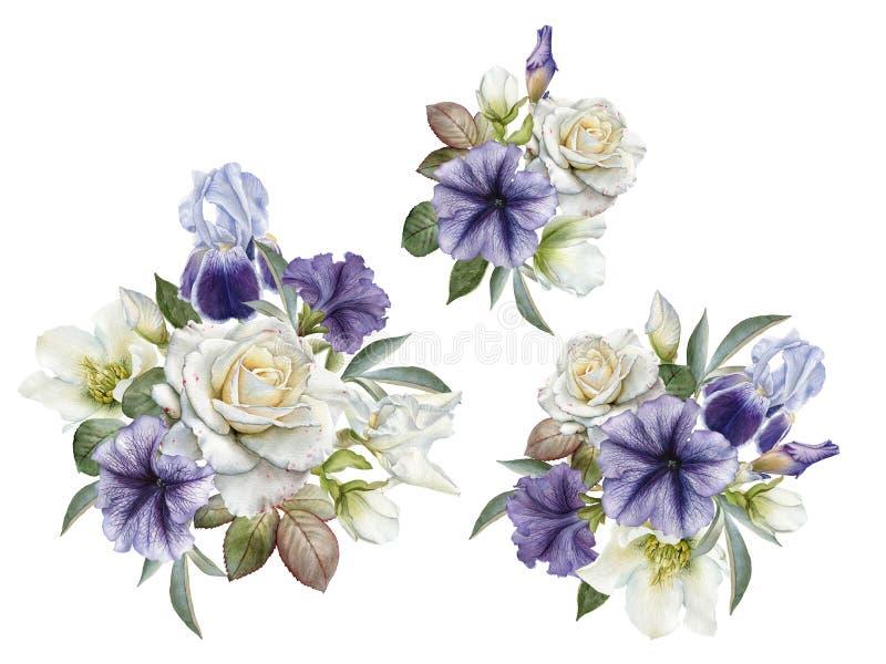 Buketter av rosor, petunior och helleboreblommor författare blommar set vattenfärg för I-målningsbild royaltyfri illustrationer
