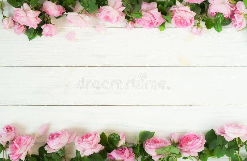 Bukettram av härliga rosa rosor på vit träbakgrund royaltyfri fotografi