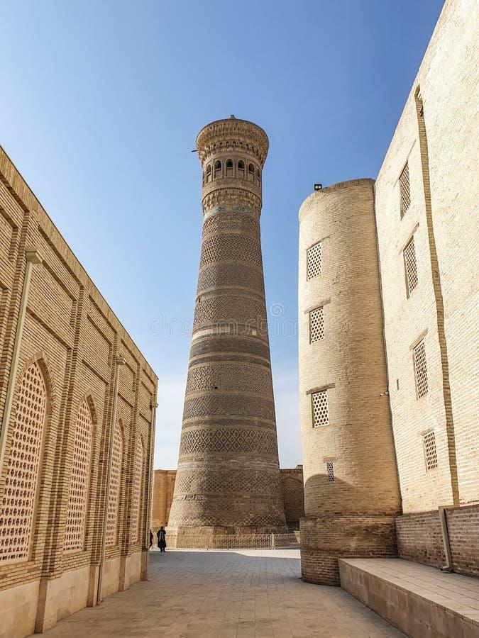 Bukhara Ásia Central Kalyan minaret faz parte do POI - Conjunto arquitetônico Kalyan, um dos mais antigos monumentos arquitetônic imagens de stock