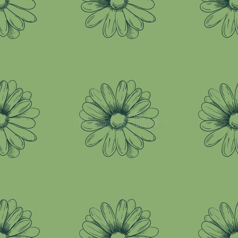 bukietów formie ciągnąć wzoru mały bezszwowy kwiat Rumianku rysunek na zielonym tle wektor ilustracji