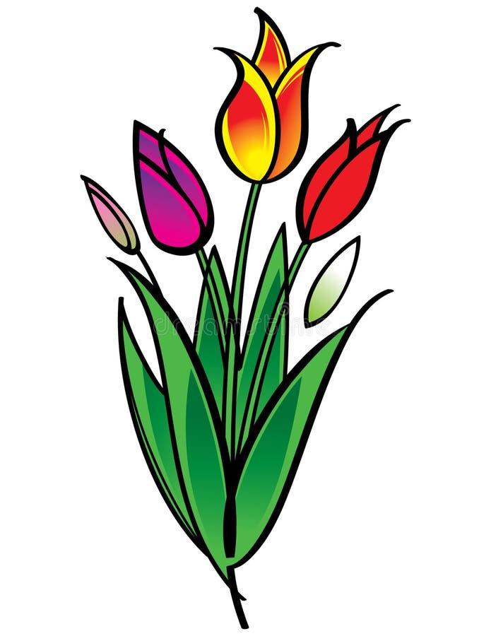 bukietów tulipany ilustracji