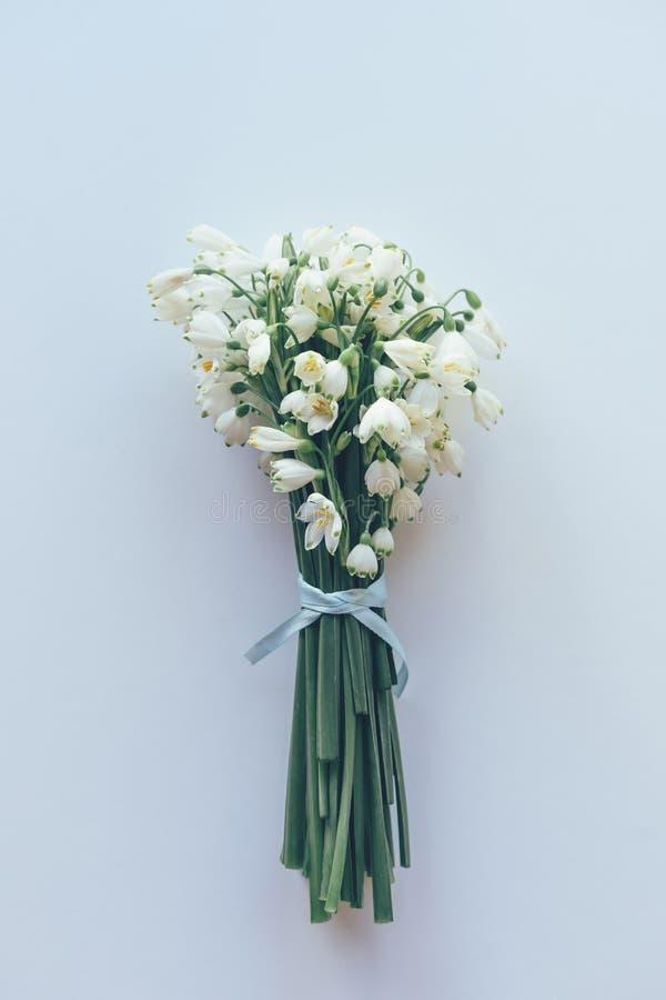 Bukiet śnieżyczki na białym tle fotografia royalty free
