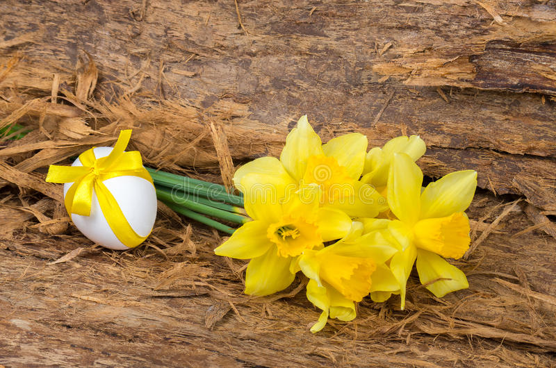 Bukiet żółci daffodils i kurczaka jajko z faborkiem obraz stock