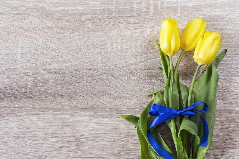 Bukiet żółci tulipany z błękitnym faborkiem na drewnianym backgrou obrazy stock