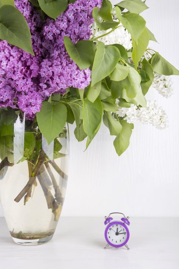 Bukiet bez z purpurowym budzikiem na białym tle fotografia stock