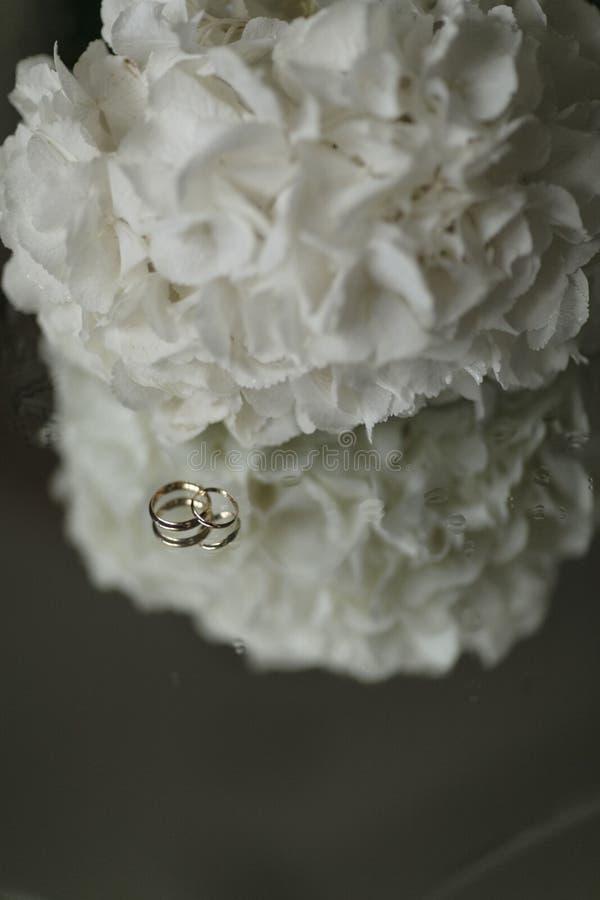 Bukiet białe hortensje i pierścionki zaręczynowi kłamamy na szkło stole Zakończenia vertical fotografia zdjęcia stock