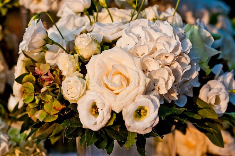 Bukiet białe róże iluminować światłem zmierzch obraz stock