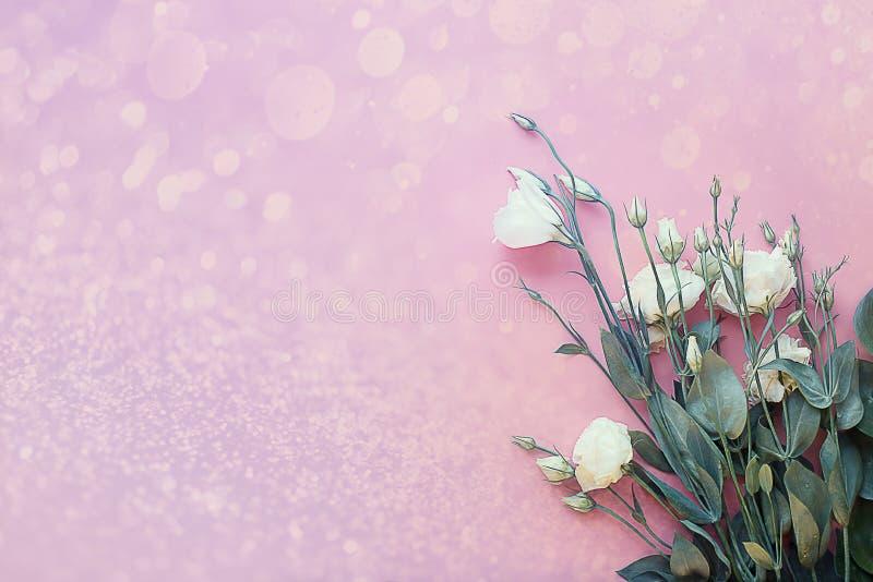 Bukiet biali eustomas na świetle - różowy rocznika tło z z głównymi atrakcjami i bokeh obraz stock